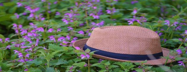 Le savon aux orties chapeau